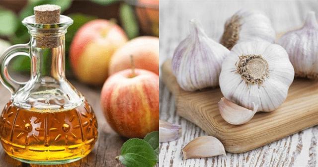 Dùng tỏi kết hợp với giấm táo cũng trị tàn nhang rất tốt