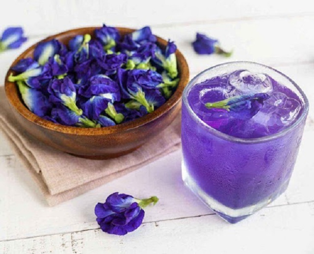 Hoa đậu biếc giảm cân
