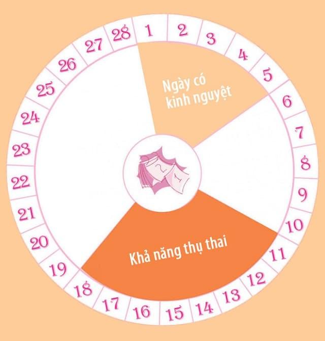 Thông thường ngày rụng trứng thường là ngày thứ 14 của chu kỳ kinh nguyệt.